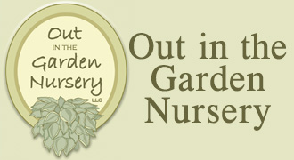 Out in the Garden Nursery